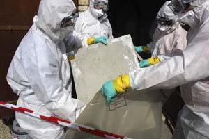 Asbestos Testing San Jose