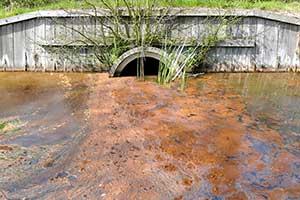 Sewage Test